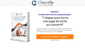 Landing page Copywriting Profitable